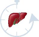 Gallbladder Symptoms in Women Slower Gallbladder